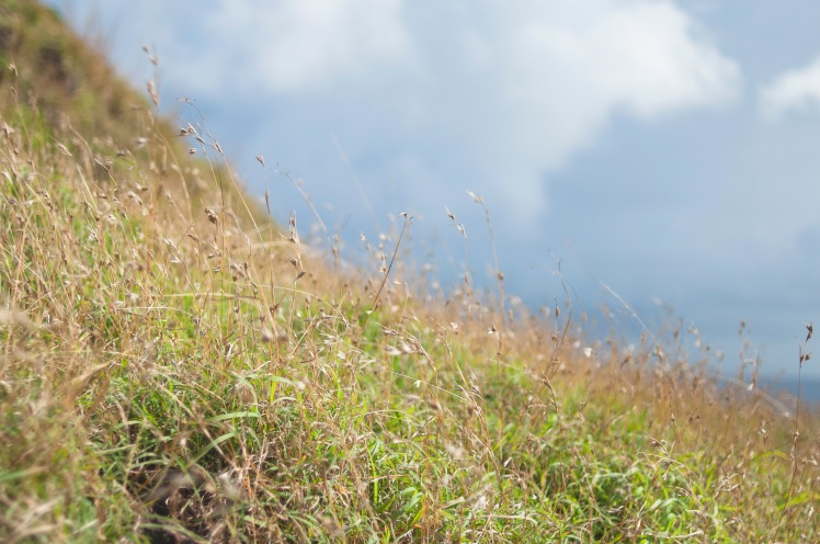 Cagayan Photo Diary 5