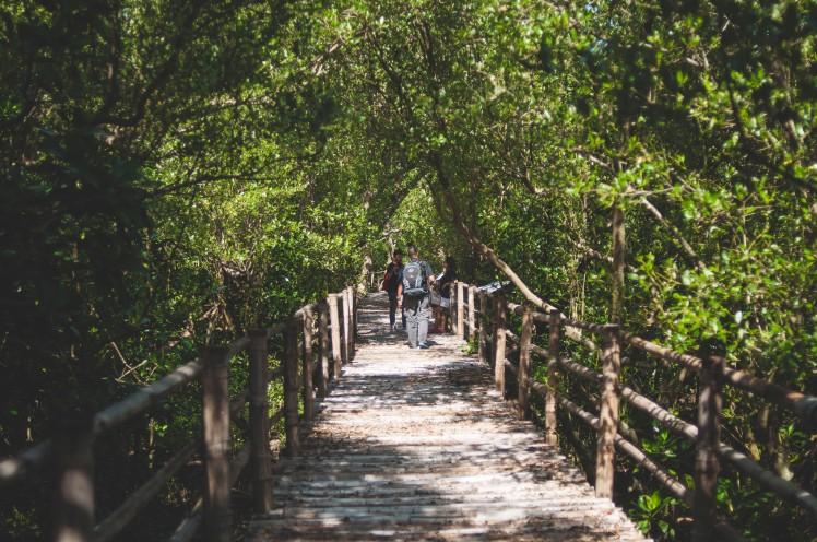 Bataan Adventure with Osprey_7